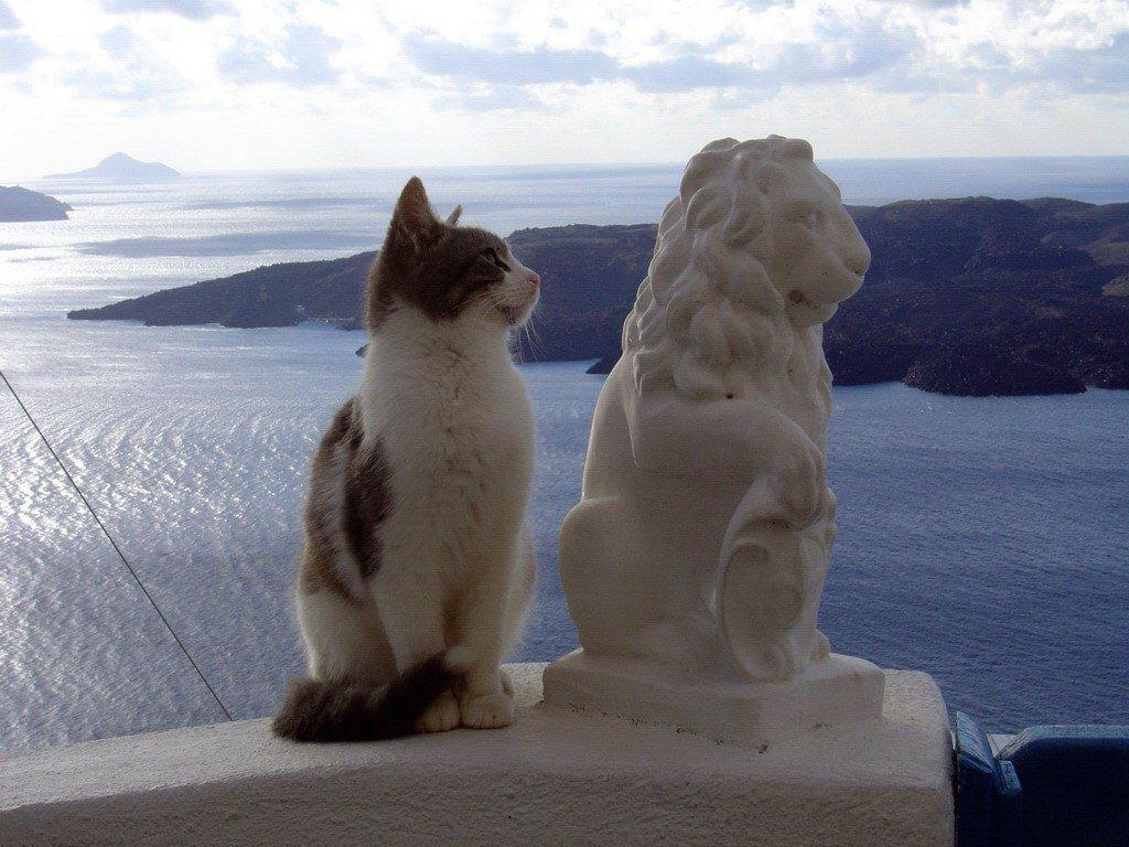 Открытки для, греческие картинки смешные